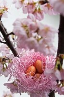 Nest of sugar eggs in flowering cherry tree