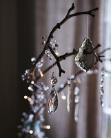 Cut glass decorations hanging from a branch