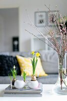 Spring atmosphere in living room - spring flowers in small containers and flowering branches in glass vase