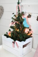 Fir tree decorated with fairy lights in white wooden crate