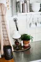 Paraffin lamp with white glass lampshade and pot of herby on kitchen counter below kitchen utensils on bracket shelf