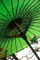 Green fabric parasol