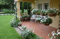 Hanging baskets of white-flowering plants on tiled veranda