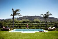 Pool, palms and sun loungers in garden with backdrop of mountain landscape