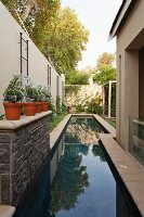Narrow pool in courtyard with small topiary bushes in pots on half-height wall to one side