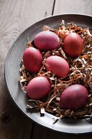 Hens' eggs dyed using wild madder in nest of paper strips on old pewter plate