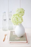 Viburnum flowers in small white vase