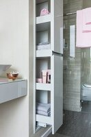 An apothecary cupboard filled with bathroom utensils in front of a shower with a glass partition wall in a modern bathroom
