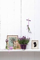 Potted lavender amongst drawings and silhouette on shelf