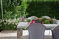 Pale grey outdoor chairs around table with recessed planting trough and ox-eye daisies flowering in garden in background