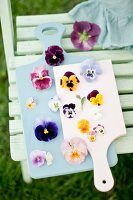 Various violas and pansies on two wooden boards
