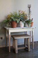 Vintage-style arrangement of potted plants on simple wooden table and rustic wooden stool against wall