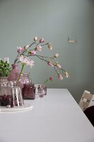 Branch of magnolia flowers and pink agapanthus in vintage vases on white table