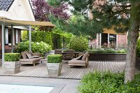 Plant containers with topiary boxwood bushes on a wooden terrace with a sunshade