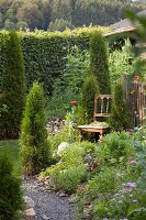 Antique chair amongst conifers in flowering bed in idyllic garden