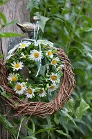 Two wreaths of wicker and chamomile flowers hanging from brass duck figurine