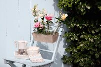 Bottles of flowers in window box on wooden chair against white wooden wall
