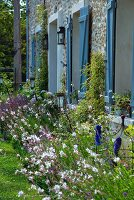 Flowering perennials outside stone house with window shutters