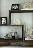 Coral, family photos and drinks tray on wooden cabinet with meandering shelving elements