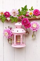 Pink lantern, garland of dahlias and dahlias in tiny bottles hung on white wooden wall