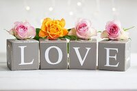Yellow and pink roses on card cubes with decorative letters spelling 'LOVE'