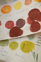 Paint samples for hand-painted wallpapers