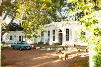 Vintage car parked in sunny front courtyard shaded by trees in front of traditional, Colonial villa with terrace