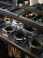 An organised wardrobe: compartments for belts and jewellery in drawers