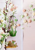 Branch of jasmine and colourful sweets stuck on poster with botanical images decorating wall