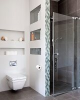 Wall-hung toilet below shelves in niches next to shower cubicle with glass door