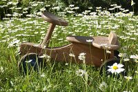 Rustic wooden ride-on trike amongst ox-eye daisies in summer meadow