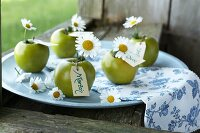 Green apples with ox-eye daisies and name cards for decorating a summer dining table