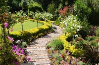 Garden path made from old railway sleepers lined with flowerbeds, low hedges and standard roses