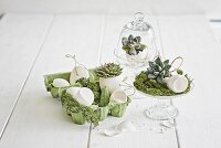 Easter arrangement of white, blown eggs, succulents and moss in glass dishes and green egg box