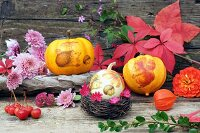 Autumnal still-life arrangement with squash, autumn flowers & leaves