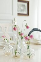 Pink aquilegia flowers in faceted glass vases