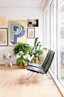 Delicate designer easy chairs in retro-style interior with house plants and gallery of pictures
