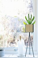 Designer plant stand next to kitchen roll holder on windowsill