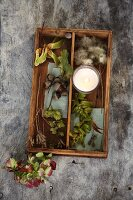 An autumnal arrangement of seed pods, acorns, hops flowers and a tea light