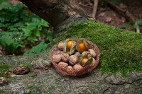 Crocheted copper wire basket of walnuts and Cape gooseberries