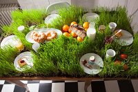 A laid breakfast table planted with grass