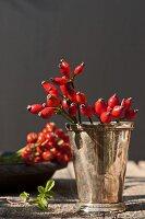 Rose hips in silver vase