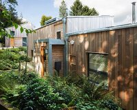 Modern wooden house with ferns planted in front garden