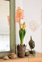 Apricot hyacinths in rusty metal pot, head of Buddha and pebbles next to shabby-chic mirror frame