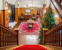 View of Christmas tree in grand hallway seen down staircase