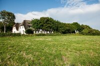 View of rustic holiday home across large meadow