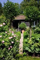 Path leading through flowering garden to log cabin