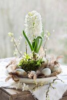 White hyacinth arranged on plate with moss, flowering twigs, eggs and feathers