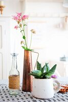 Pink aquilegia flowers in copper vase, candle in glass bottle and succulent planted in rustic mug
