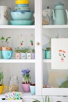 Pastel crockery and planted tins in white dresser